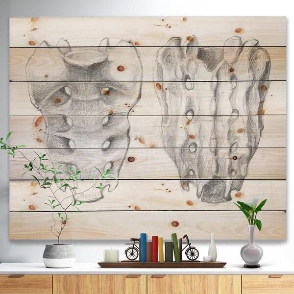 Designart 'Sacral bone double View' Bones Painting Print on Natural Pine Wood - White