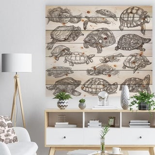 'Turtles in Freehand sketching' Sketch of Nautical Animals of Painting Print on Natural Pine Wood - White