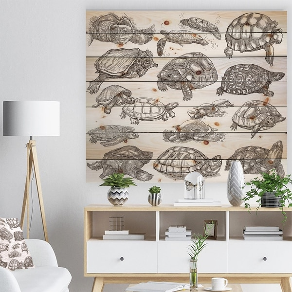 Designart 'Turtles in Freehand sketching' Sketch of Nautical Animals of Painting Print on Natural Pine Wood - White