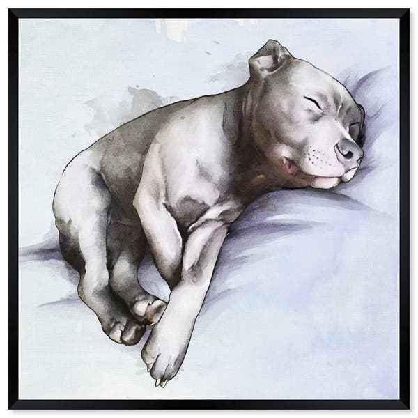 Shop Oliver Gal 'Sleeping Pitbull' Dogs and Puppies Framed