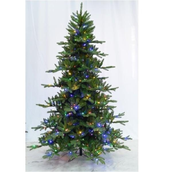 Lead Free Christmas Trees: Shop Pre-lit LED Dual Lights Instant Connect Noble Fir 9
