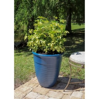 Begonia Set of 2 Planter Set - Blue