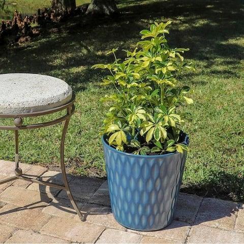 Forsythia 2 Piece Round Planter Set - Blue