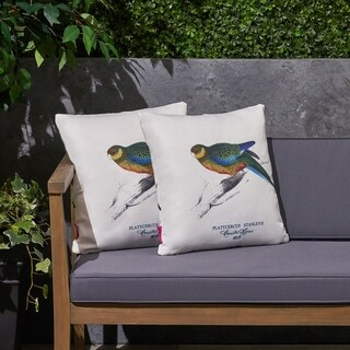 """Avian Outdoor 17.75"""" Square Cushion (Set of 2) by Christopher Knight Home"""
