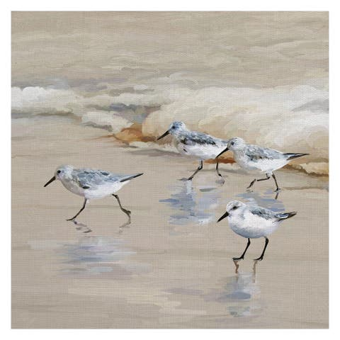 Masterpiece Art Gallery Sandpiper Beach I Amber by Studio Arts Canvas Art Print - Multi-color