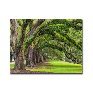 Live Oaks Boone Plantation by Donald Paulson Gallery Wrapped Canvas Giclee Art (24 in x 32 in, Ready to Hang)