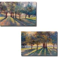 Shadow Play 1 and 2 by Amanda Houston 2-piece Gallery Wrapped Canvas Giclee Art Set (Ready to Hang)