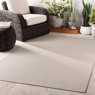 Neka Ivory Casual Indoor / Outdoor Accent Rug - 2' x 3'