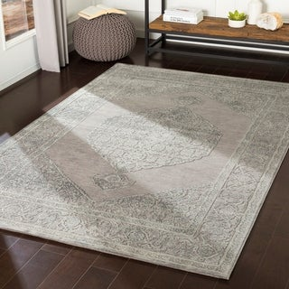 Ariadne Sage & Grey Chenille Vintage Persian Accent Rug - 2' x 3'