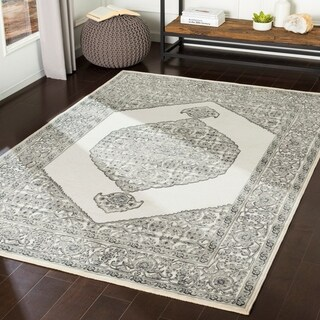 Ariadne Grey Chenille Vintage Persian Accent Rug - 2' x 3'