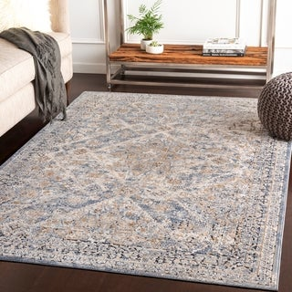 Klimentina Grey Traditional Accent Rug - 2' x 3'