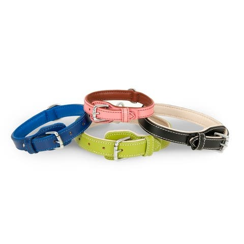 Petmate Leather Dog Collar