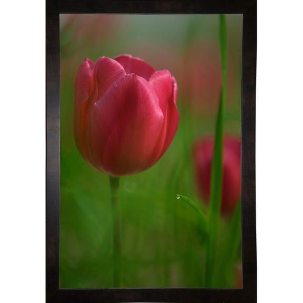 "Tulip No 2-ISTNAG128831 Print 25.5""x17"" by István Nagy"