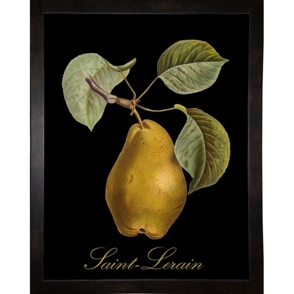 """St. Lerain Pear-MINSOM91703 Print 16.75""""x13"""" by Mindy Sommers"""