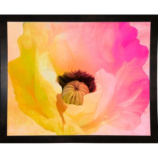 "Poppy Gradient II-COLBAK115636 Print 13.5""x17"" by Color Bakery"