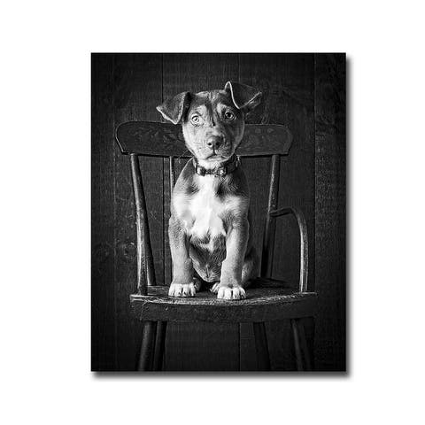 Mutt Black & White by Edward M. Fielding Gallery Wrapped Canvas Giclee Art (15 in x 12 in, Ready to Hang)