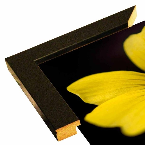 "AMF_0094-FLOPHO117676 Print 15.25""x17"" by Flowerphotos"