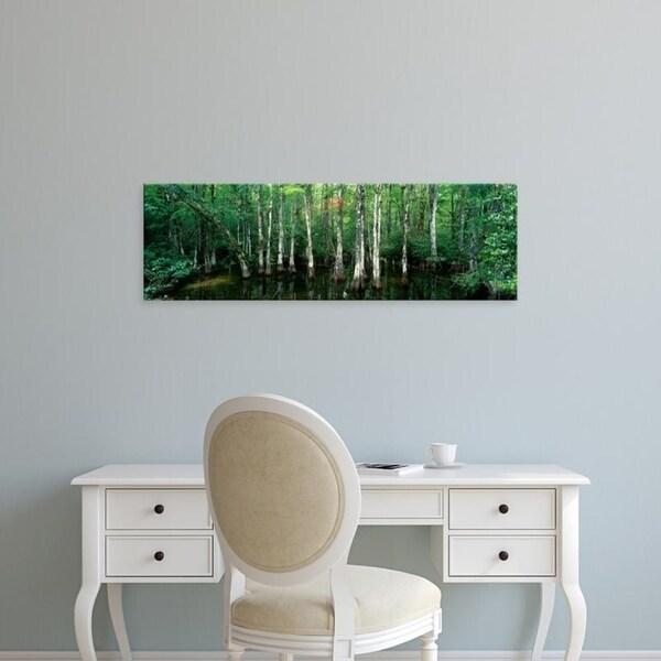 Easy Art Prints Panoramic Images's 'Big Cypress Nature Preserve, Florida, USA' Premium Canvas Art