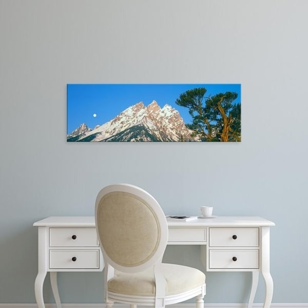 Easy Art Prints Panoramic Images's 'Old Patriarch tree, Cathedral Group of the Teton Range, Teton, Wyoming' Canvas Art