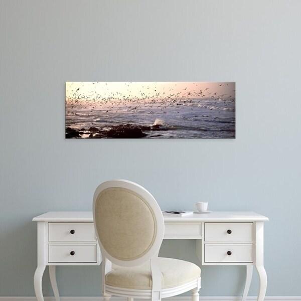 Easy Art Prints Panoramic Images's 'Seagulls flying at a coast, Baie De Quiberon, Morbihan, Brittany, France' Canvas Art