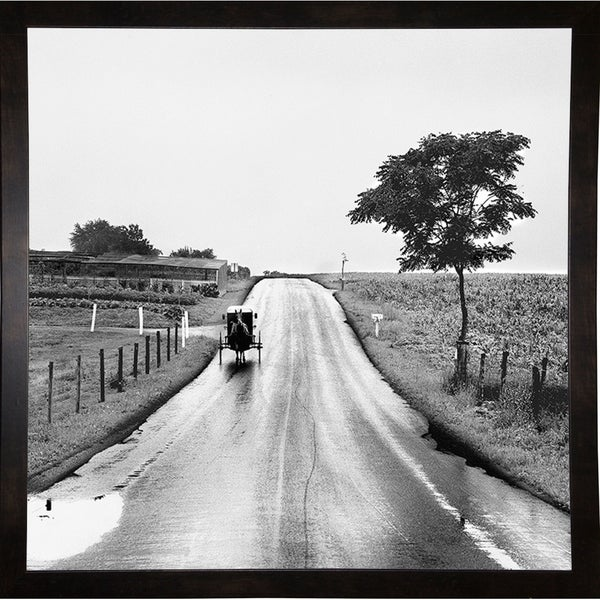 "The Amish Road-HARLAN74162 Print 20""x20"" by Harold Silverman - Landscapes"