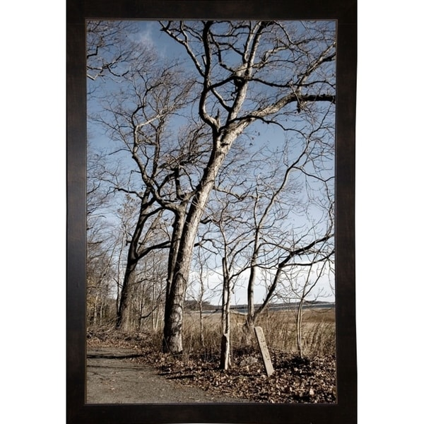 "Winter Family Of Trees-HARTRE90067 Print 20.25""x13.25"" by Harold Silverman - Trees & Old Fences"