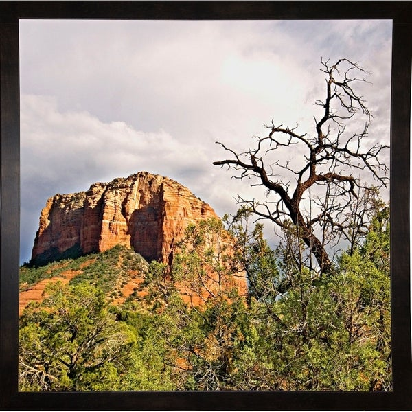 """Mtn. Peak With Foliage-HARLAN78299 Print 19""""x19"""" by Harold Silverman - Landscapes"""