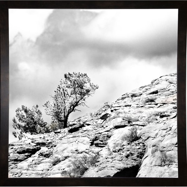 "Simple Tree At The Top B/W-HARLAN78294 Print 20""x20"" by Harold Silverman - Landscapes"