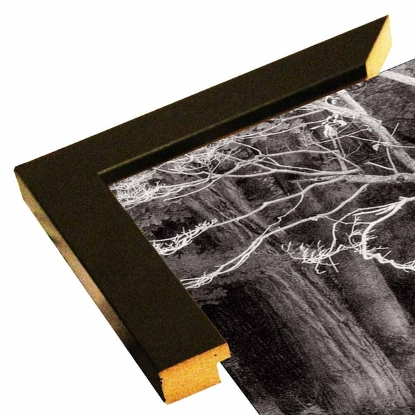 """Bare Branches & Woods-3 Tone-HARTRE66947 Print 15""""x25"""" by Harold Silverman - Trees & Old Fences"""