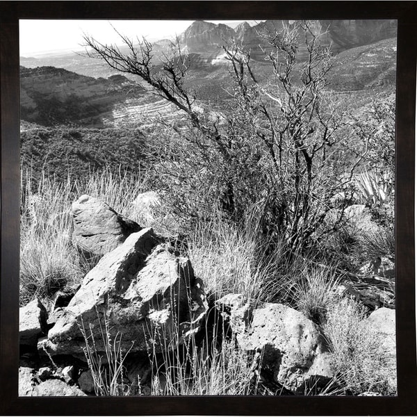 "View From Mountain Top B & W-HARLAN78724 Print 20""x20"" by Harold Silverman - Landscapes"