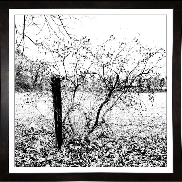 "Brookville Ny Winter-HARLAN86898 Print 20""x20"" by Harold Silverman - Landscapes"