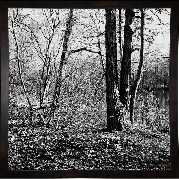 """Winter Woods-HARTRE70316 Print 18""""x18"""" by Harold Silverman - Trees & Old Fences"""