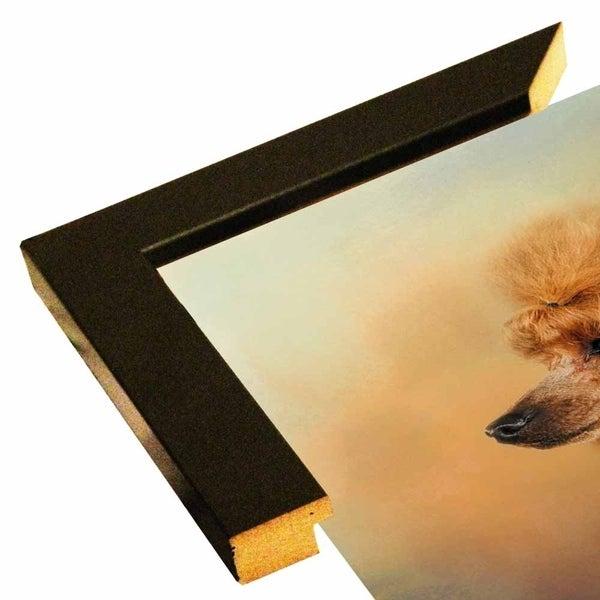"Enjoying The Breeze Apricot Poodle-JAIJOH140338 Print 20""x20"" by Jai Johnson"