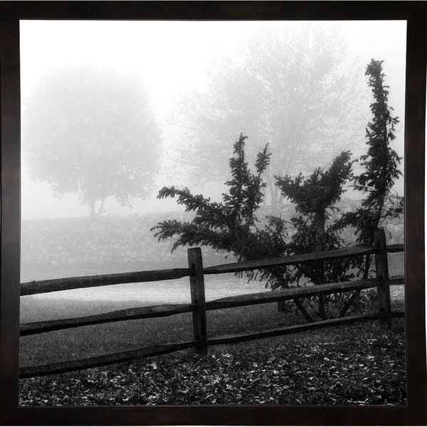 "Shades Of Grey 2-HARTRE74776 Print 20""x20"" by Harold Silverman - Trees & Old Fences"
