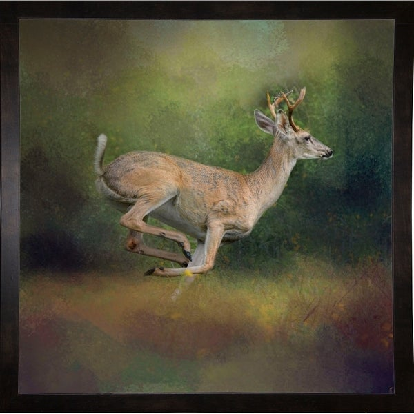"Buck On The Run-JAIJOH139699 Print 20""x20"" by Jai Johnson"