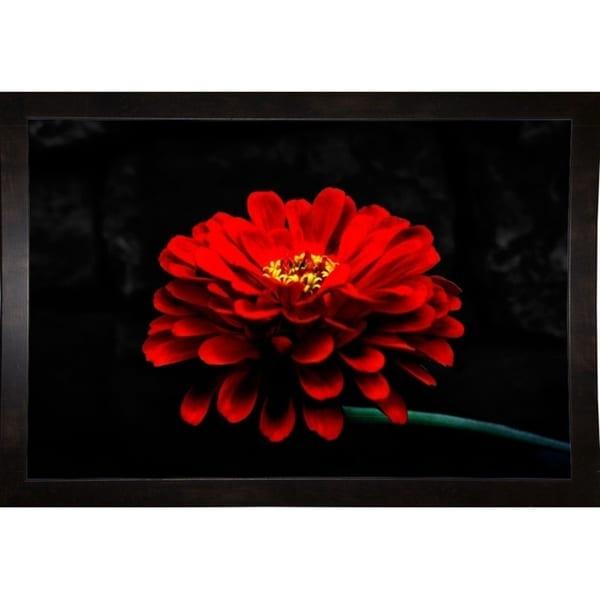 "Exotic Red Flower-HARFLO53551 Print 10""x15"" by Harold Silverman - Flowers"