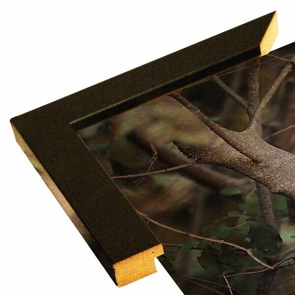 "Camera Shy Squirrel-JAIJOH139711 Print 13.25""x10.75"" by Jai Johnson"