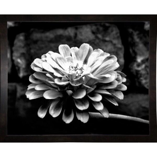 "Flower & Stem-HARFLO58528 Print 10""x15"" by Harold Silverman - Flowers"