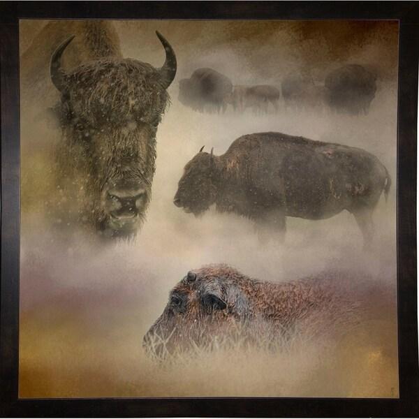 "Buffalo Dreams-JAIJOH139704 Print 20""x20"" by Jai Johnson"
