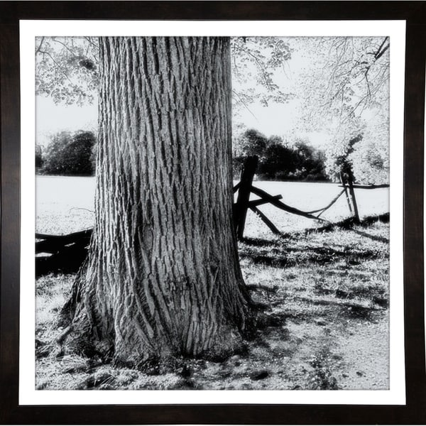 "Old Foto Tone Soft Design-HARTRE80584 Print 19""x19"" by Harold Silverman - Trees & Old Fences"