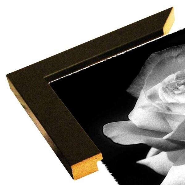 """Rose Delight B&W-HARFLO50309 Print 7""""x5"""" by Harold Silverman - Flowers"""