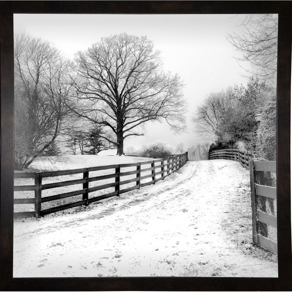"""Greys Of Winter-HARTRE78038 Print 20""""x20"""" by Harold Silverman - Trees & Old Fences"""