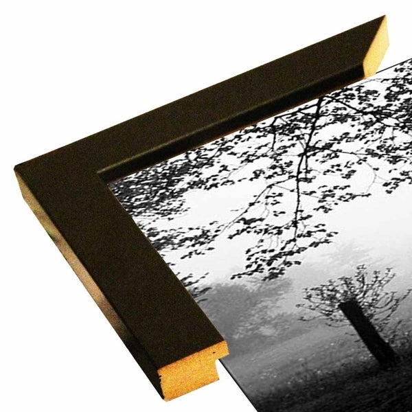 "Slim View Plate #5-HARTRE50447 Print 6.25""x17.25"" by Harold Silverman - Trees & Old Fences"