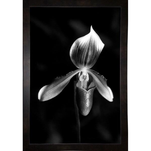 "Plate 2-HARFLO58530 Print 18""x12"" by Harold Silverman - Flowers"