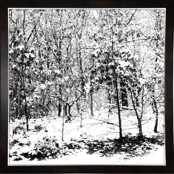 """Winter In The Woods Plate 1-HARTRE86964 Print 20""""x20"""" by Harold Silverman - Trees & Old Fences"""