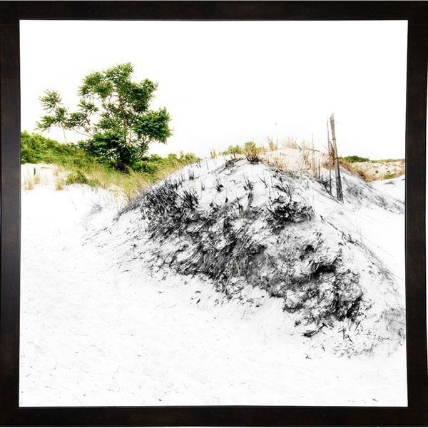 "Dune With Grass-HARBEA84792 Print 20""x20"" by Harold Silverman - Beach, Palms & Lighthouses"