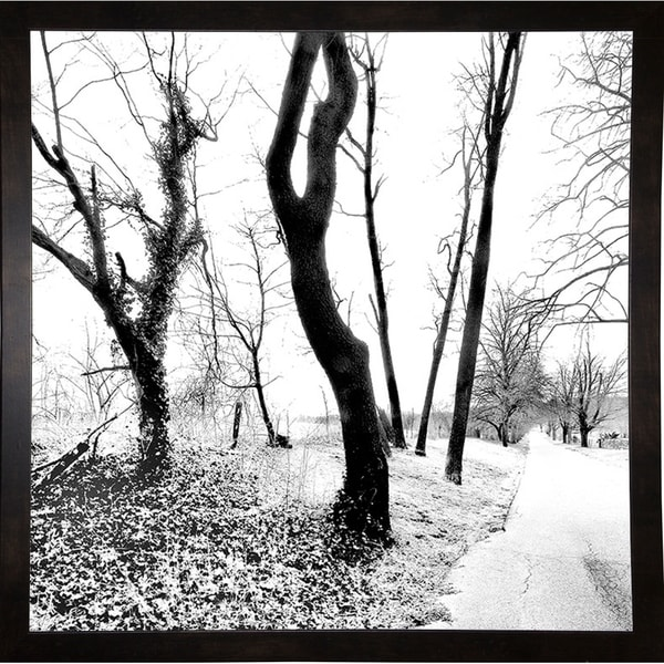 """Black And White Square-HARTRE85723 Print 18""""x18"""" by Harold Silverman - Trees & Old Fences"""
