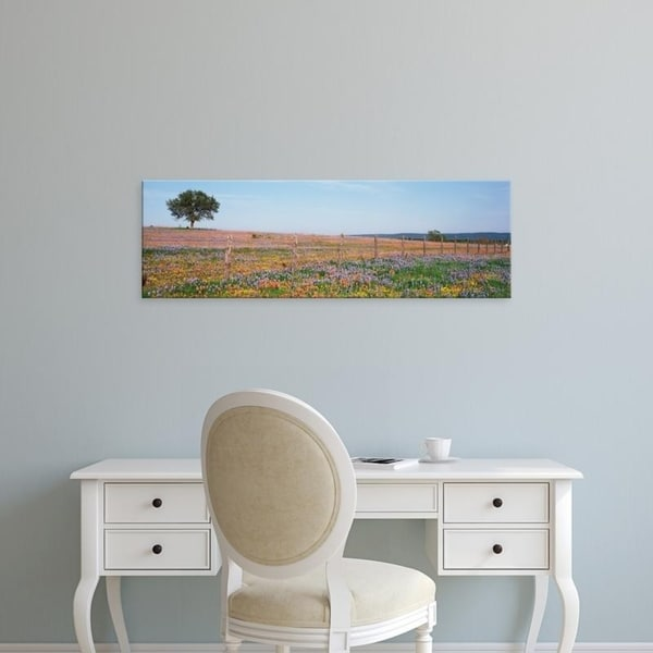 Easy Art Prints Panoramic Images's 'Texas Bluebonnets And Indian Paintbrushes In A Field, Texas Hill Country, Texas' Canvas Art