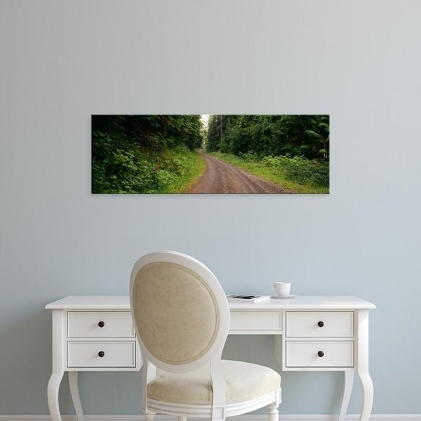 Easy Art Prints Panoramic Images's 'Road passing through a forest, Olympic National Park, Washington State' Premium Canvas Art