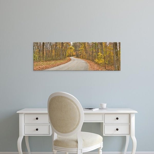 Easy Art Prints Panoramic Images's 'Road passing through a forest, Brown County State Park, Brown County, Indiana' Canvas Art